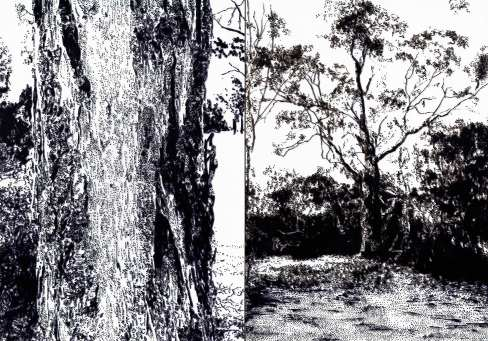 Yarra_River_Trail_Diptych_II_Humphries